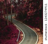 surreal nature landscape empty... | Shutterstock . vector #1243274911
