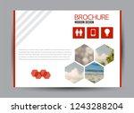 flyer  brochure  billboard... | Shutterstock .eps vector #1243288204