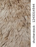 brown sheepskin fur texture... | Shutterstock . vector #1243314544