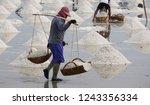 worker using wooden baskets to... | Shutterstock . vector #1243356334