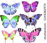beautiful color butterflies set ...   Shutterstock . vector #1243382974