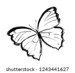 black brush and ink artistic...   Shutterstock . vector #1243441627