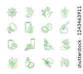 vector icon and logo for... | Shutterstock .eps vector #1243463911