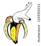 vector hand drawn illustration...   Shutterstock .eps vector #1243503211