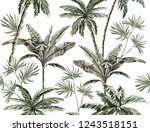 beautiful tropical vintage... | Shutterstock .eps vector #1243518151