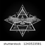 surreal symbol. sacred geometry ... | Shutterstock .eps vector #1243523581