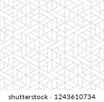 pattern with thin straight... | Shutterstock .eps vector #1243610734