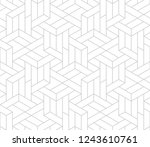 pattern with thin straight... | Shutterstock .eps vector #1243610761