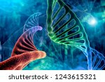 dna strand and cancer cell... | Shutterstock . vector #1243615321