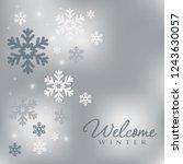 minimal elegant holiday... | Shutterstock .eps vector #1243630057