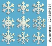 snowflakes set with transparent ...   Shutterstock .eps vector #1243654834