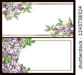 romantic wedding invitation... | Shutterstock .eps vector #1243738324