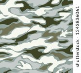 camouflage pattern background... | Shutterstock .eps vector #1243836061