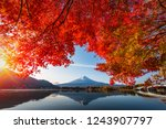 colorful autumn season and... | Shutterstock . vector #1243907797
