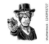monkey gentleman holding a... | Shutterstock .eps vector #1243953727