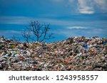 Environmental Damage Of Garbag...
