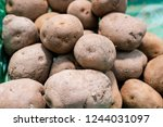 potatoes are vegetables that...   Shutterstock . vector #1244031097