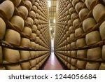 montecavolo  reggio emilia...   Shutterstock . vector #1244056684