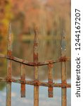 an old rusty  metal fence in an ... | Shutterstock . vector #1244167207