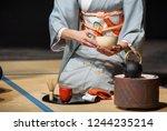 japanese woman with light blue... | Shutterstock . vector #1244235214