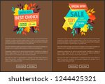 special offer and best choice... | Shutterstock .eps vector #1244425321