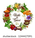 spices and herbs  vector... | Shutterstock .eps vector #1244427091