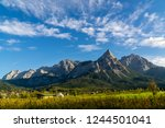 panoramic view of high... | Shutterstock . vector #1244501041