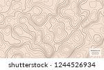 topographic world map.... | Shutterstock .eps vector #1244526934