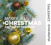 merry christmas and happy new... | Shutterstock . vector #1244557951