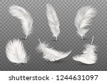 vector 3d realistic different... | Shutterstock .eps vector #1244631097