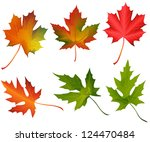 autumn leaves | Shutterstock .eps vector #124470484