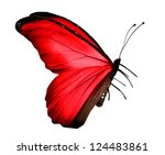 Stock photo red butterfly isolated on white 124483861