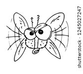 fly hand drawn. vector... | Shutterstock .eps vector #1245027247