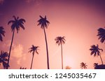 copy space of silhouette... | Shutterstock . vector #1245035467