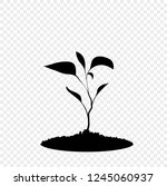 black silhouette of sprouting...   Shutterstock .eps vector #1245060937