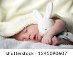 newborn baby boy with rabbit... | Shutterstock . vector #1245090607