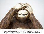see no evil monkey close up... | Shutterstock . vector #1245096667