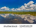 a beautiful lake in danube...   Shutterstock . vector #124510129
