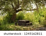 wooden table in the shadow of a ... | Shutterstock . vector #1245162811