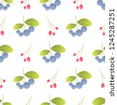 wild bilberries and barberries... | Shutterstock .eps vector #1245287251