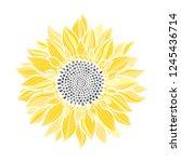 sunflower.sketch. hand draw... | Shutterstock .eps vector #1245436714