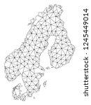 polygonal mesh map of... | Shutterstock .eps vector #1245449014