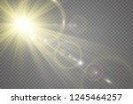 special lens flash  light... | Shutterstock .eps vector #1245464257