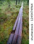 wooden plank footpath boardwalk ... | Shutterstock . vector #1245474964