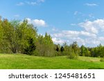 plain simple countryside spring ... | Shutterstock . vector #1245481651