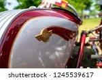 paaren im glien  germany   may... | Shutterstock . vector #1245539617