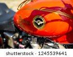 paaren im glien  germany   may... | Shutterstock . vector #1245539641