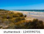 lake clifton south western... | Shutterstock . vector #1245590731