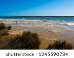 lake clifton south western... | Shutterstock . vector #1245590734