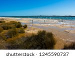 lake clifton south western... | Shutterstock . vector #1245590737